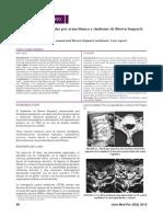 Dialnet-TraumaVertebroMedularPorArmaBlancaYSindromeDeBrown-4003645.pdf