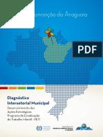 Diagnóstico Intersetorial Municipal - Conceicao_do_Araguaia - PA
