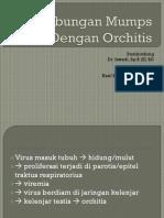 Mumps Orchitis
