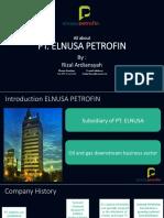 Profil Elnusa Petrofin
