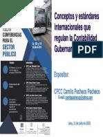 Conceptos y Estandares Internacionales Que Regulan La Contabilidad Gubernamental Camilo Pacheco Pacheco