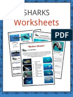 Sample-SHARKS-Worksheet.pdf
