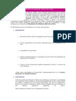 252445124-Programa-de-Sanidad-Maritima.docx