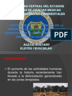 Efectos de La Deforestación en La Diversidad de Macroinvertebrados y Estructura de La Comunidad en Arroyos Amazónicos Ecuatorianos