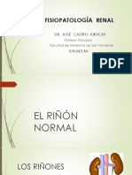 Clase Introductoria de Fisiopatología Renal