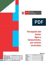 Percepción Del Sector Agua y Saneamiento Por Actores 2017