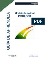 Guia_Modelo_INTRAGOB.pdf