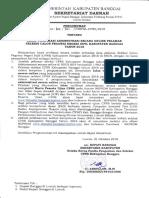 MSSELEKSICPNS.pdf