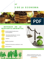 Economia Ambiental Eq.4-Converted