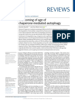 Coming of Chaperone Mediated Autophagy