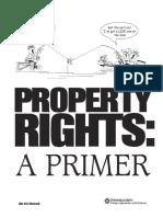 Property right.pdf