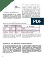 Dossier Pedagogique Romeo Et Juliette