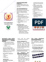Iva Leaflet Fadhil
