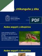 Dengue, Chikungunya y Zika-2