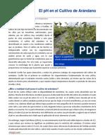 19. El PH en El Cultivo de Arandano