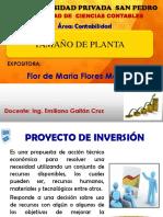 PROYECTO DE INVERSION.pptx