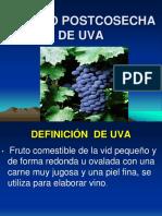 MANEJO POSTCOSECHA DE UVA.pdf