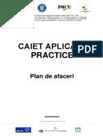 Macheta Plan de Afaceri_104010_lucru (1)