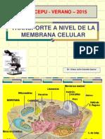 Transporte Membrana Celular