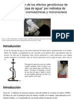 """Determinación de los efectos genotóxicos de fumar con """"pipa de agua"""""""