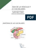 11 Oct.semiologia de La Vesicula y Las Vias Biliares