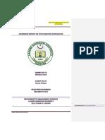 Internship Report Format Fall 2018 (Updated on October 02, 2018) (1)