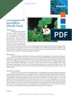 Harpagophytum_2222.pdf