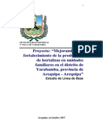 Linea de Base Proyecto Hortalizas Yarabamba 12-11-17