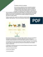 Biomasa en Bolivia