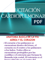 RCP  2.ppt