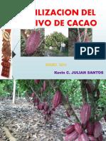FERTILIZACION CACAO.pdf