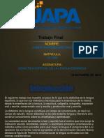 TRABAJO FINAL, Didactica Esp. de La Leng. Esp.