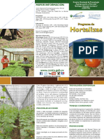 Brochure Programa de Hortalizas 2016 Ok