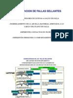 conectividad estructural.pdf