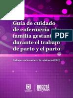 Guia Sala de partos.pdf