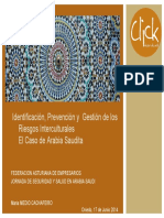 Ponencia. Identificación, prevención y gestión de los riesgos interculturales.pdf