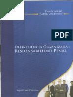 DELINCUENCIA ORGANIZADA - AUTORIA Y PARTICIPACION EJRLB.pdf