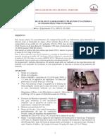 v1_Proctor standard.pdf