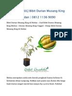 JUAL Bibit Musang King di MEDAN - 0812 1136 9090