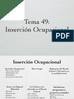Inserción ocupacional