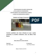 Relatorio Final de Estagio Profissional Maeva pdf