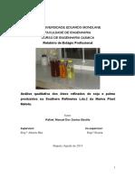 Relatorio Final de Estagio Profissional Maeva-corrigido e Retificado