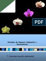 7a_caracterizacion_ambiental.ppt