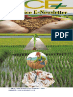 1st & 2nd November 2018 Daily Global Regional Local Rice E-Newsletter