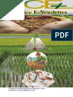 1st & 2nd November 2018 Daily Global Regional Local Rice E-Newsletter