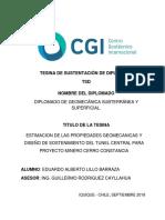 Tesina (TSD) Diplomado de Geomecánica - Eduardo Alberto LILLO BARRAZA