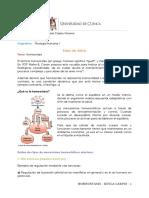 1. homeostasis-fisiología.docx