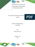 Fase 1- Descripción y Antecedentes de La Evaluación de Impacto