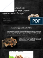Aulia NF_25010115130205_Hama Perkebunan Kopi_Hypothenemus Hampei