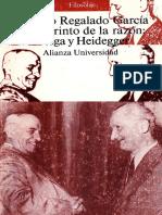 Antonio Regalado Ortega Heidegger El Laberinto de La Razón